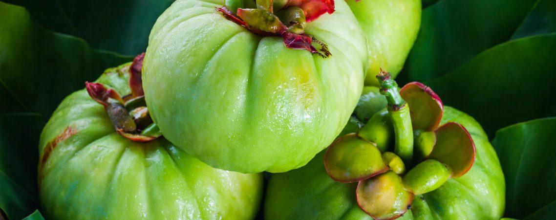 Garcinia Cambogia per dimagrire, cos'è e come funziona